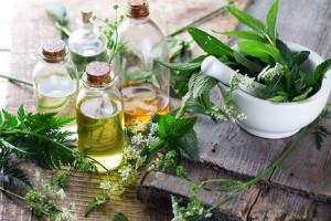 Découvrez la richesse des plantes ayurvédiques